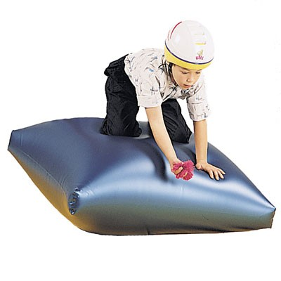 Dolphin Air Mat